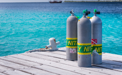 Photograph of a Specialty diving course.