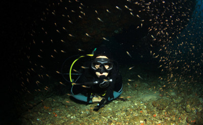 Photo of Night Diver diving course.